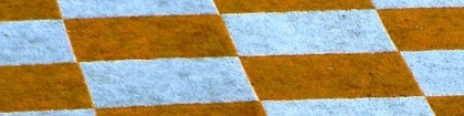Checkerboard strip